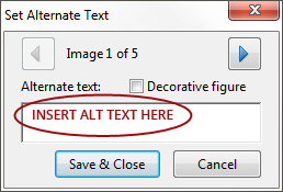 Screenshot of the Set Alternative Text panel.